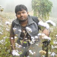 Vinu Vijaykumar.N from Thrichur