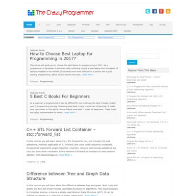 The Crazy Programmer