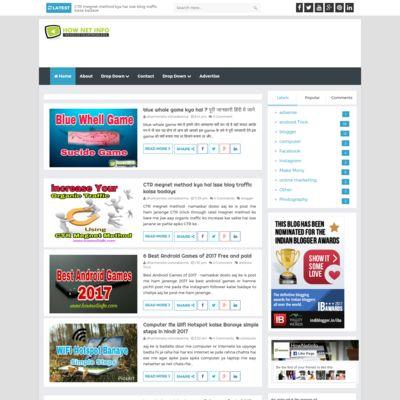 hownetinfo Seo Blogging Earn mony